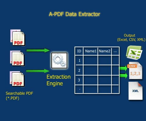 Batch extract PDF text information to Excel  [A-PDF com]