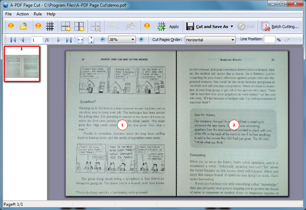 How to cut one PDF page to multiple pages by using A-PDF Page Cut1